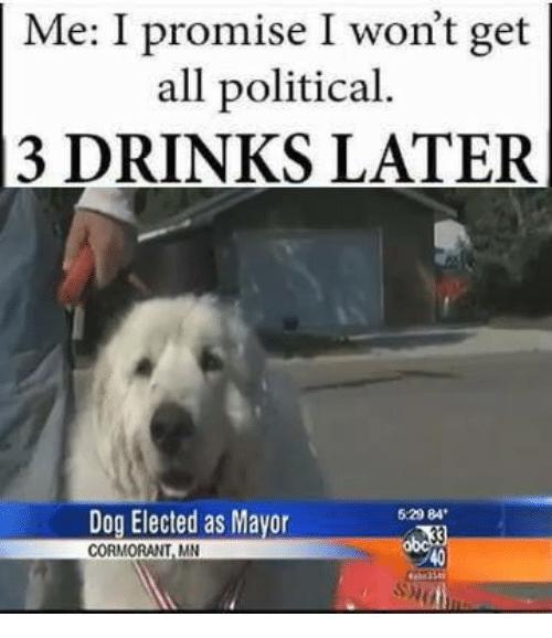 allpoliticaldogmayor