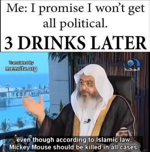 allpoliticalmickey
