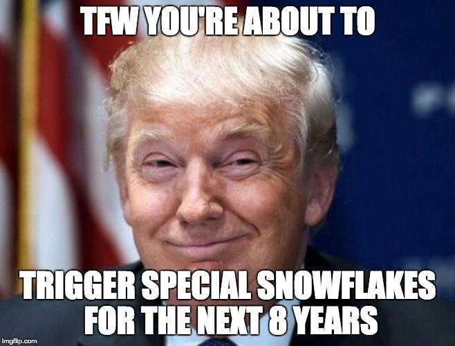trigger-snowflakes-meme