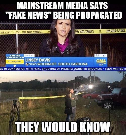 fake-news-meme