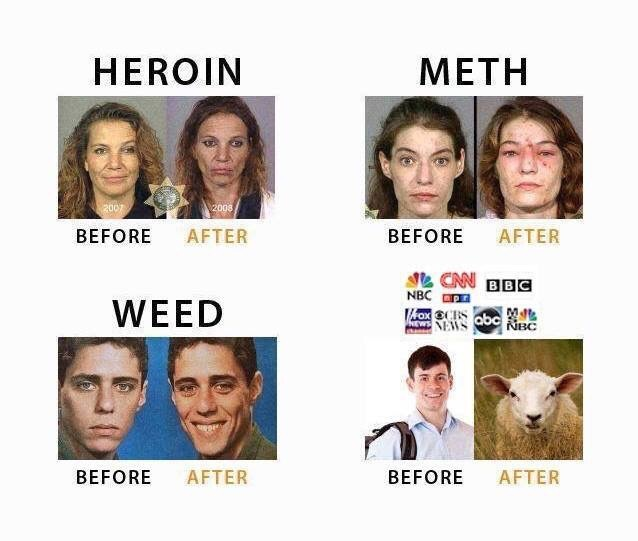 mainstreammedialies