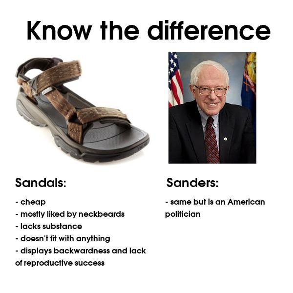 sandals vs sanders
