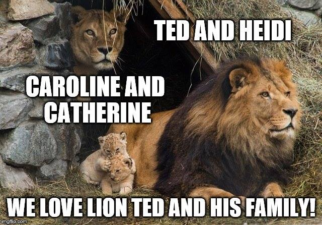 Lion Ted