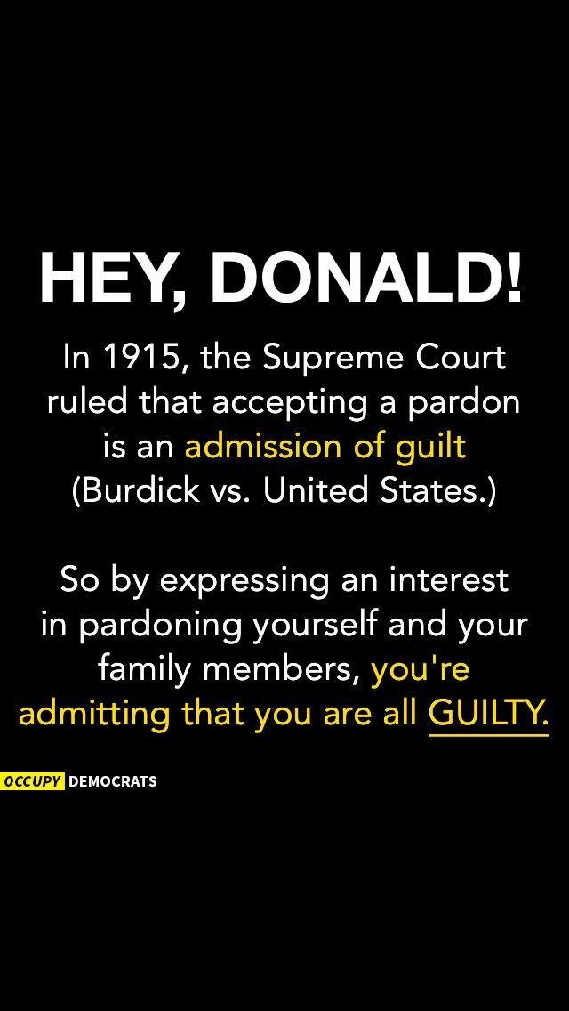 political memes donald trump pardon