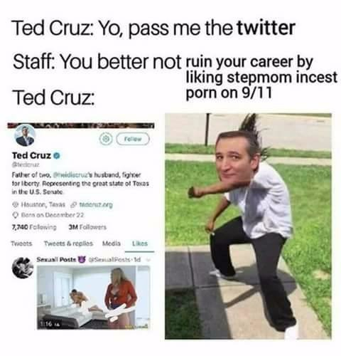 Ted Cruz incest porn meme 1