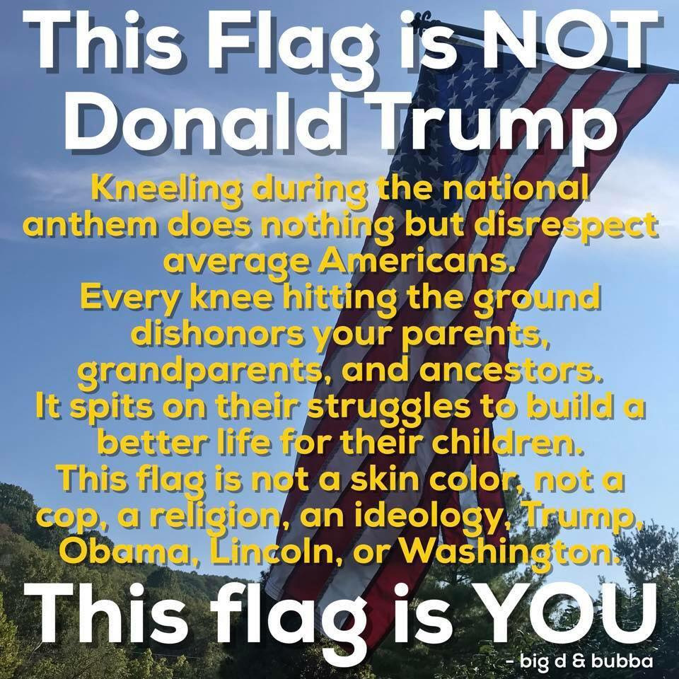 flag trump political meme