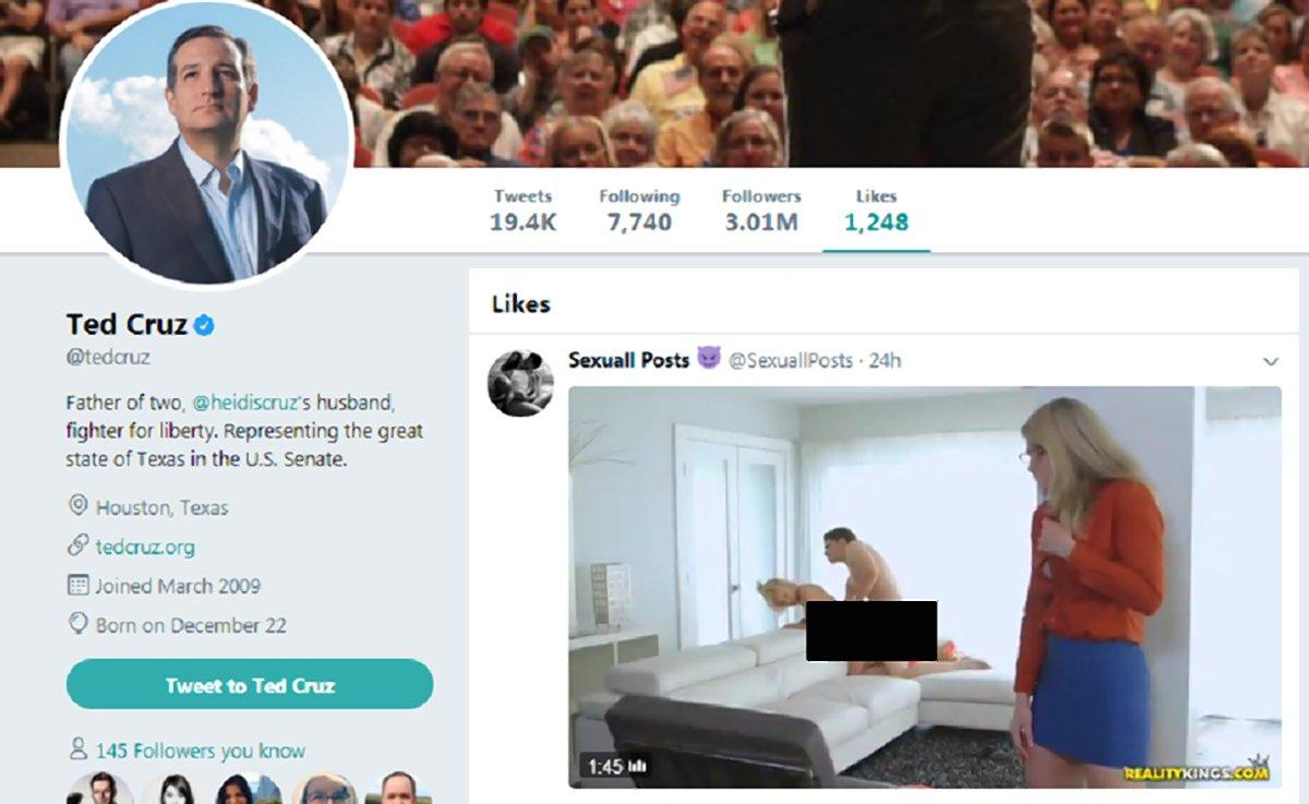 ted cruz likes porn on twitter