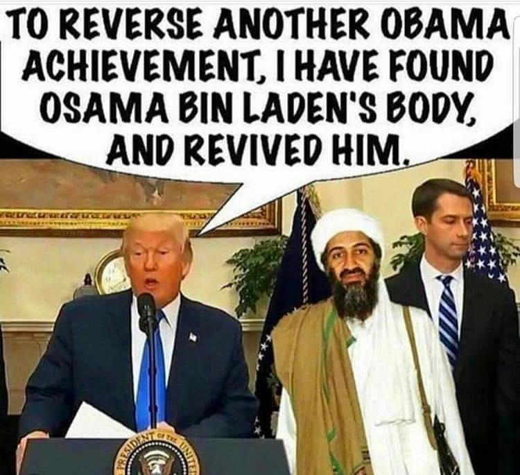 revived Osama Trump political meme